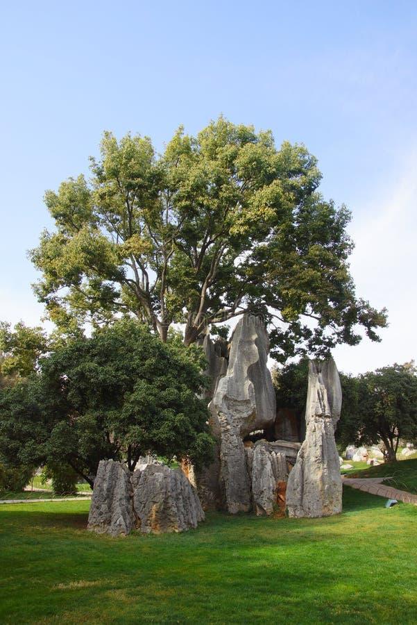 Лес камня Shilin в Kunming, Юньнань, Китае стоковые фотографии rf