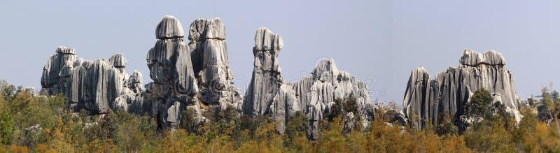 Лес камня Shilin стоковые изображения rf