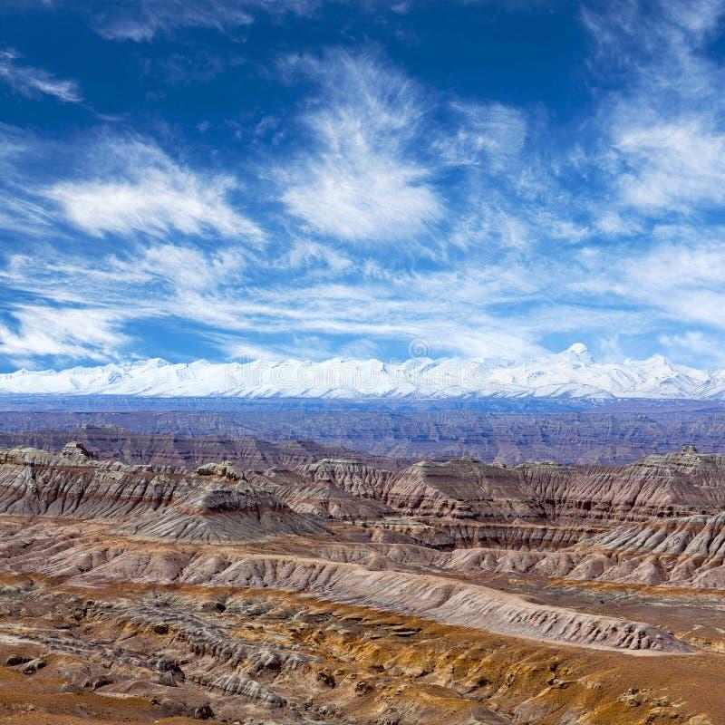 Лес национальное Geopark земли в графстве Zhada, Тибете стоковые фотографии rf