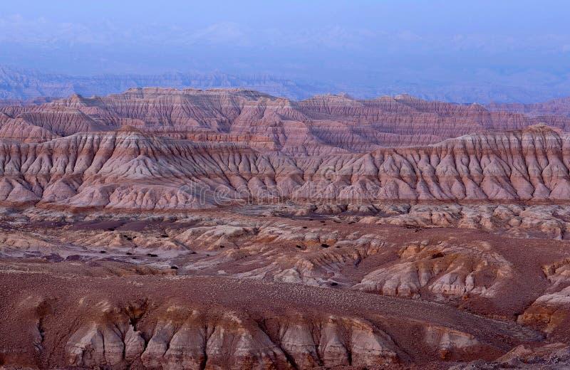 Лес национальное Geopark земли в Тибете, Китае стоковое изображение rf
