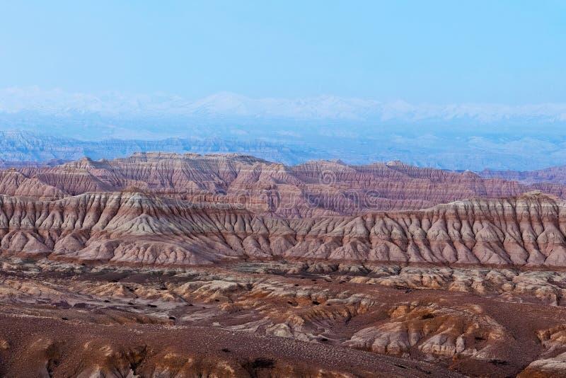 Лес национальное Geopark земли в Zanda County, Тибете стоковые изображения