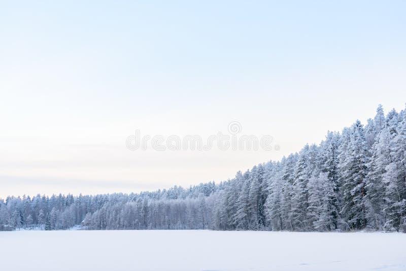 Лес на озере льда покрывал с сильным снегопадом и небом в сезоне зимы на Лапландии, Финляндии стоковое фото rf
