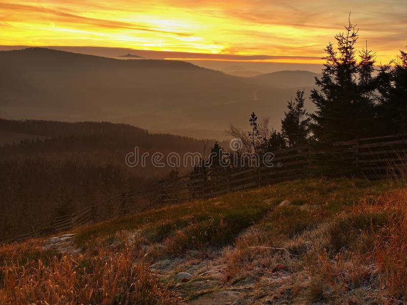 Лес на холме увеличил от предпосылки осени раннего утра туманной. стоковое изображение rf
