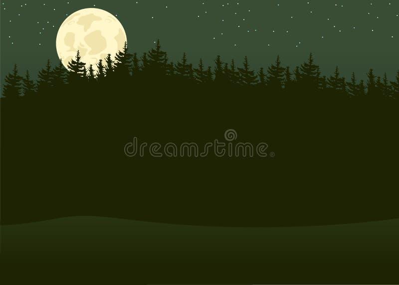 Лес ночи иллюстрация штока