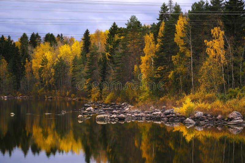 Лес, озеро, облака и утесы осени стоковые изображения