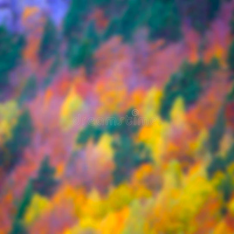 Лес осени в Пиренеи Valle de Ordesa Уэске Испании стоковое фото