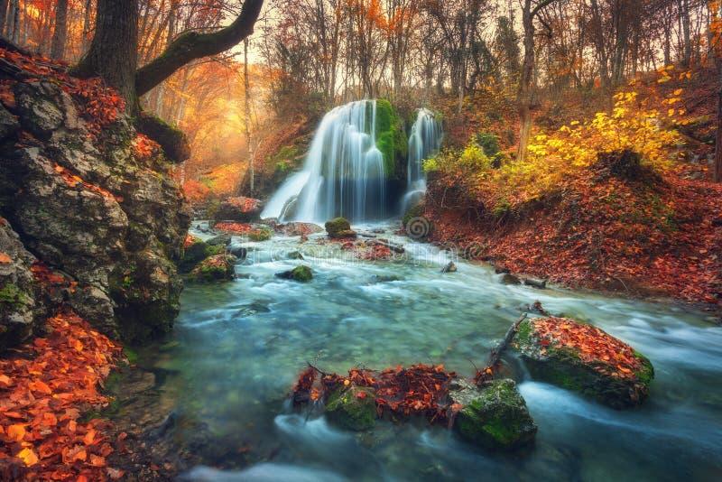 Лес осени с водопадом на реке горы на заходе солнца стоковое фото rf
