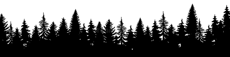 Лес силуэта елей рождества Coniferous елевая панорама Парк вечнозеленой древесины r иллюстрация штока