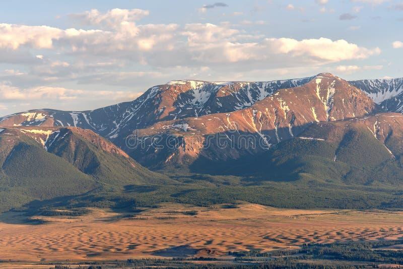 Лес степи вида с воздуха гор стоковые изображения rf