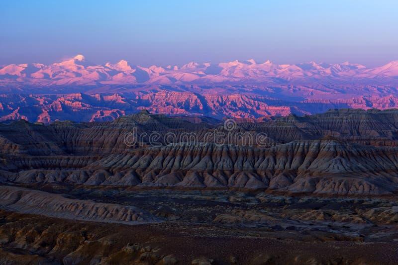 Лес Geopark земли в Ngari, Тибете стоковое фото rf