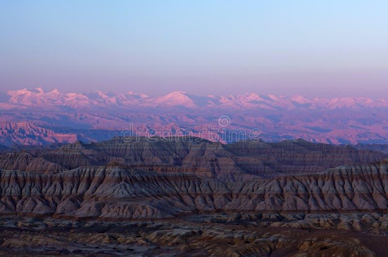 Лес Geopark земли, Тибет стоковые изображения rf