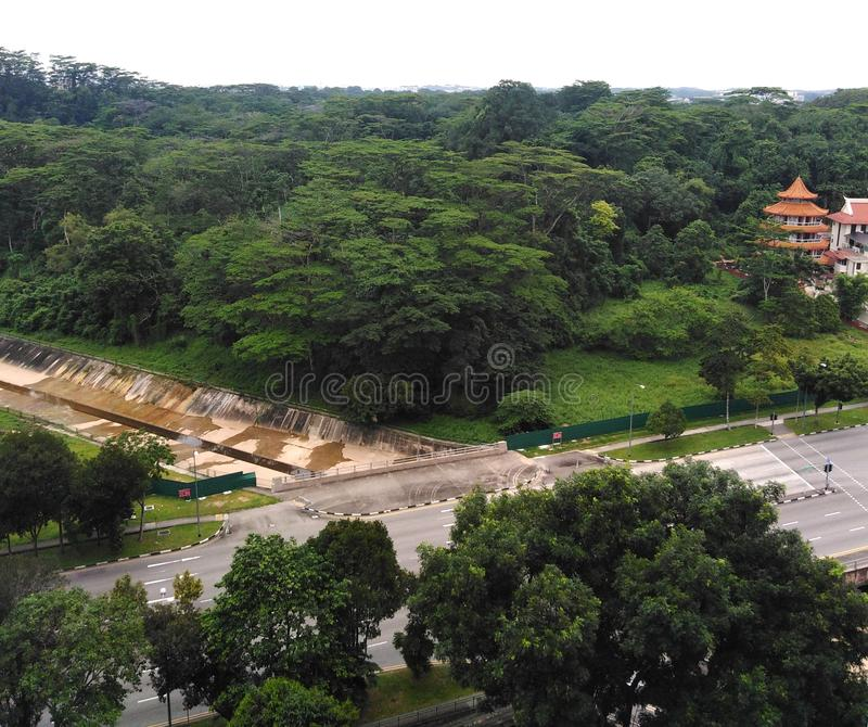 Лес Tengah в Сингапуре стоковое изображение