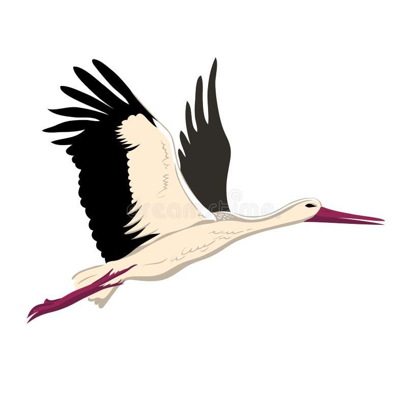 Летание белого аиста вверх по крыльям Стиль эскиза белого аиста иллюстрация штока