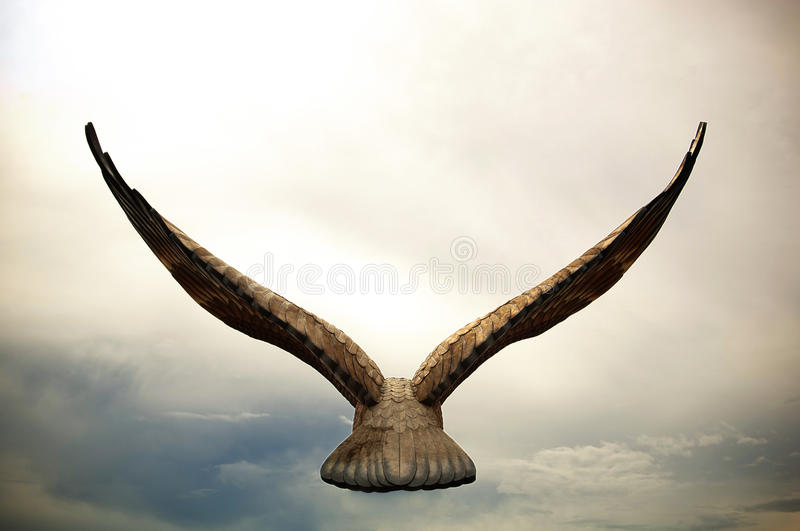летание орла стоковые фотографии rf