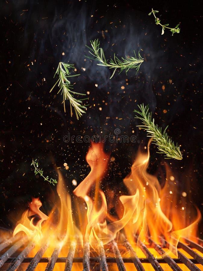 Летание Розмари над решеткой литого железа с пламенами огня стоковое фото rf