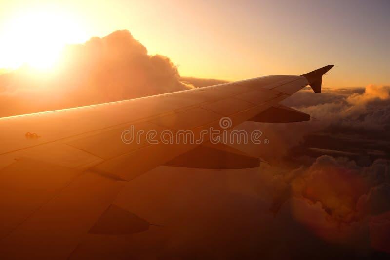 Летание самолета над облаками на заходе солнца стоковые изображения