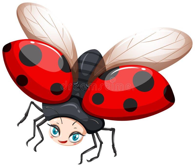 Летание Ladybug на белой предпосылке бесплатная иллюстрация