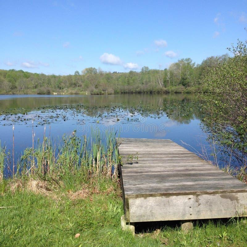 Летний день на озере стоковые фотографии rf