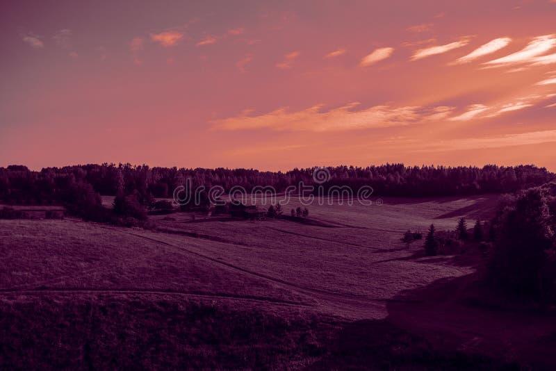 Летний пейзаж с видом на поле на закат стоковая фотография rf