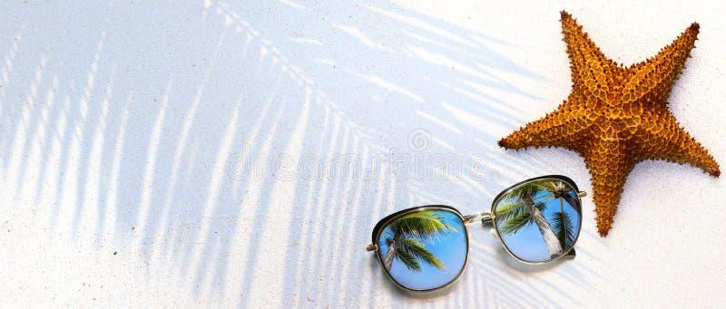 Летняя концепция, раковина и солнцезащитные очки на тропическом песке  стоковое фото rf