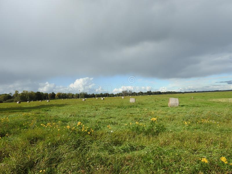 Летом, Литва стоковое фото rf