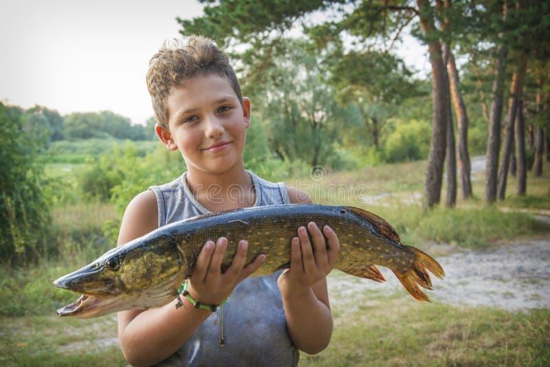 Летом, мальчик держит большую щуку стоковые фотографии rf
