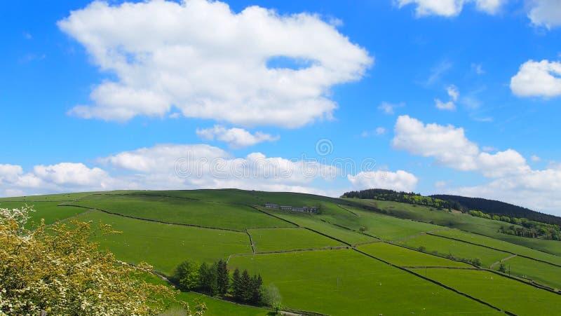 Лето в пиковом районе, северная Англия стоковое изображение