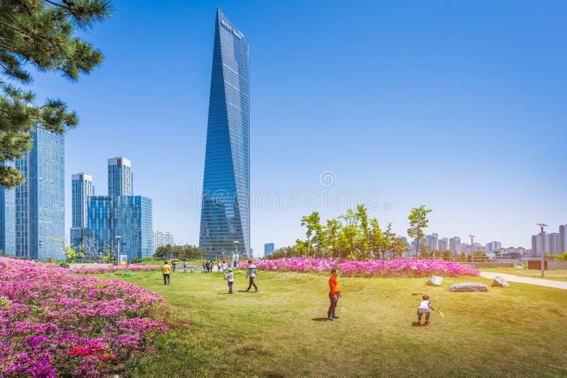 Лето в Сеуле с красивым цветком, центральным парком в деловом районе Songdo международном, Инчхоне Южной Корее стоковые фото