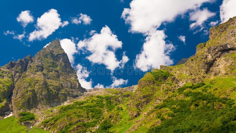Лето горы день солнечный Зеленые лес и луг стоковые изображения