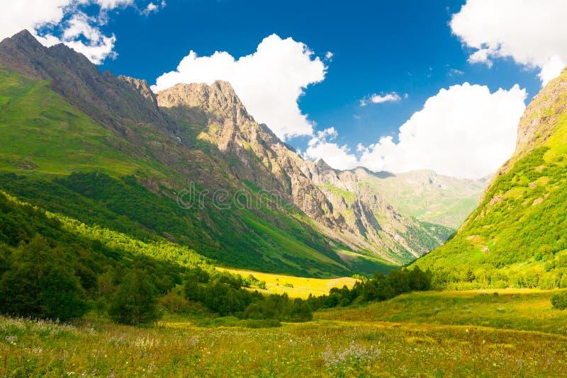 Лето горы день солнечный Зеленые лес и луг стоковые фотографии rf