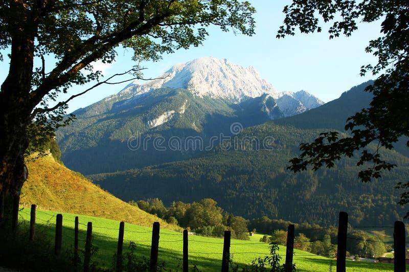 лето горы alpes aloso красивейшее стоковые фото