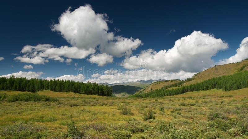 Download лето дня солнечное стоковое изображение. изображение насчитывающей highlands - 485249