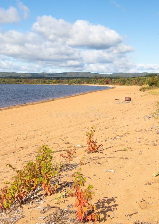 Лето закончилось на озере оленей стоковая фотография rf