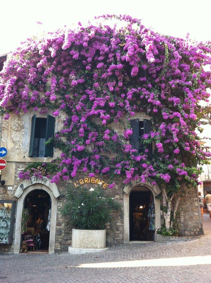 Лето Италии стоковое изображение