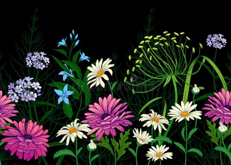лето картины безшовное Borderс полевыми цветками бесплатная иллюстрация