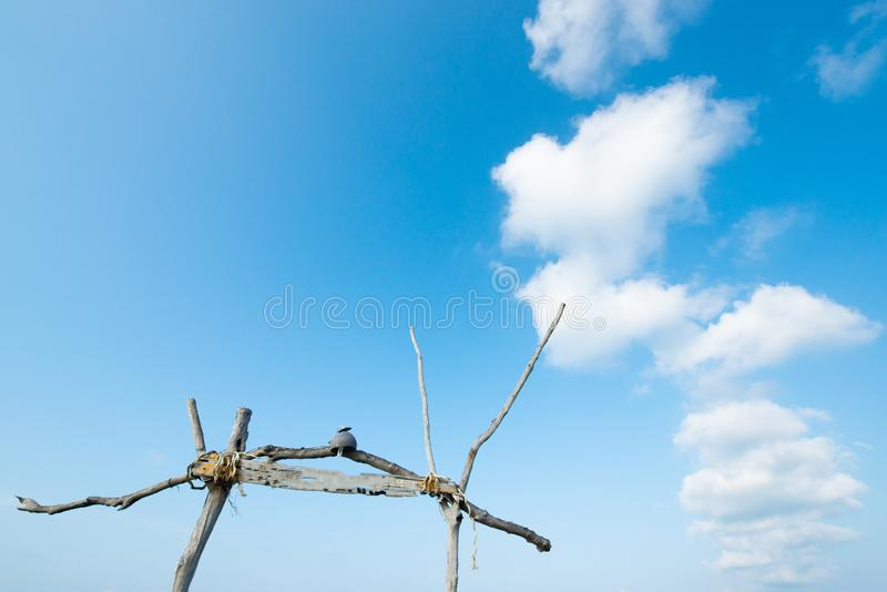 Лето, красивые нежно облака и светлый - голубое небо на дне солнечности Старый деревянный свод изолированный на голубом переднем  стоковые фото