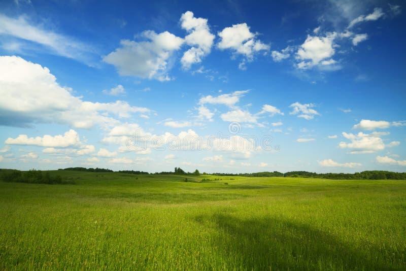 лето ландшафта стоковая фотография rf
