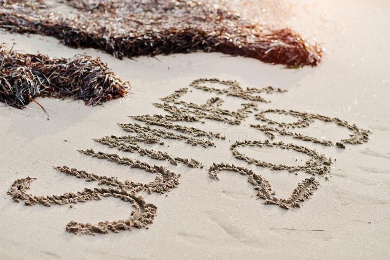 Лето 2019 надписи и водоросли на песке на пляже стоковые изображения