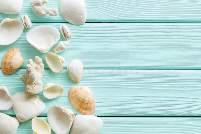 Лето на дизайне моря для блога с раковинами на космосе экземпляра взгляда сверху предпосылки мяты зеленом деревянном стоковые фотографии rf