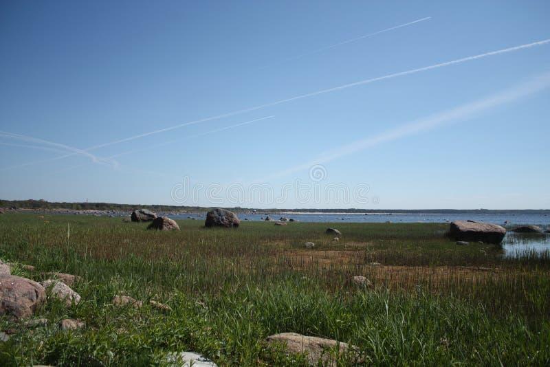 Лето на заливе стоковая фотография rf