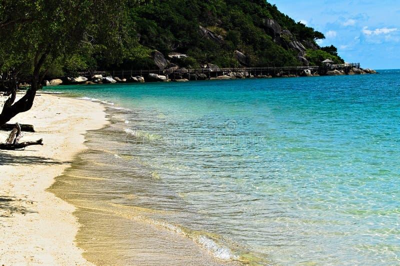 Лето на пляже и океане стоковое изображение