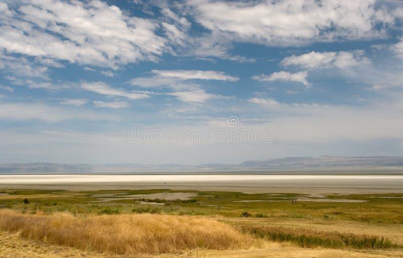 лето озера стоковая фотография