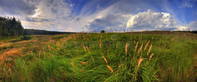 лето панорамы стоковые изображения rf
