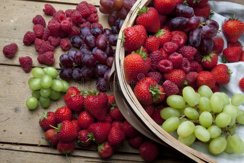 лето плодоовощ ягод стоковое фото