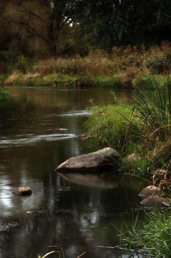 лето потока стоковое фото rf