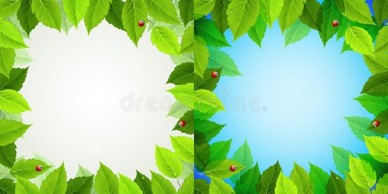 лето рамки иллюстрация вектора