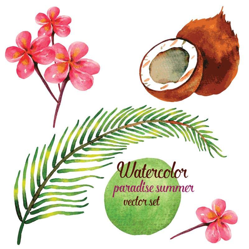 Лето рая в комплекте иллюстрации вектора акварели стоковое изображение