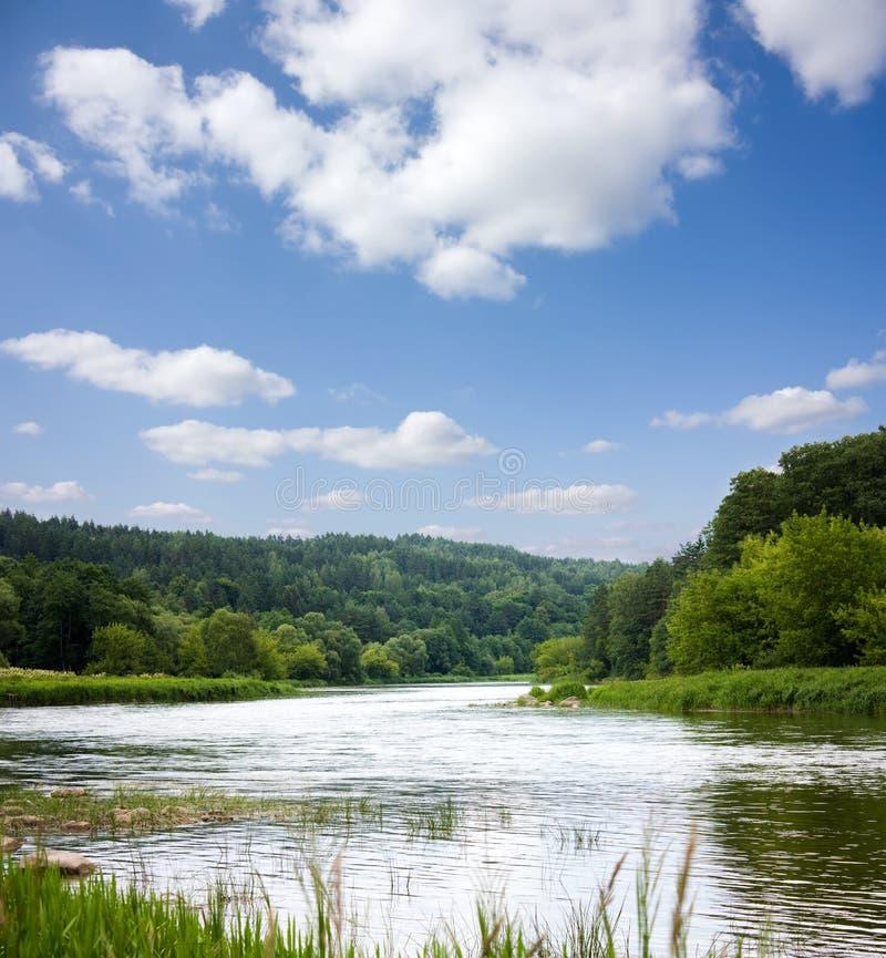 лето реки ландшафта стоковая фотография rf