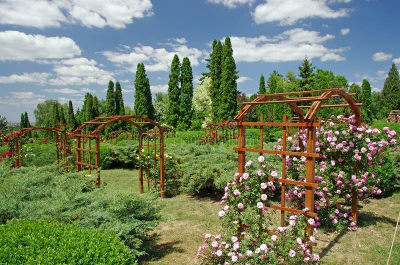 лето сада стоковые изображения rf