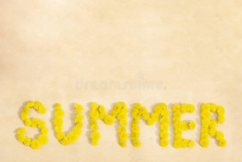 Лето слова от одуванчиков на деревянной поверхностной предпосылке стоковое изображение